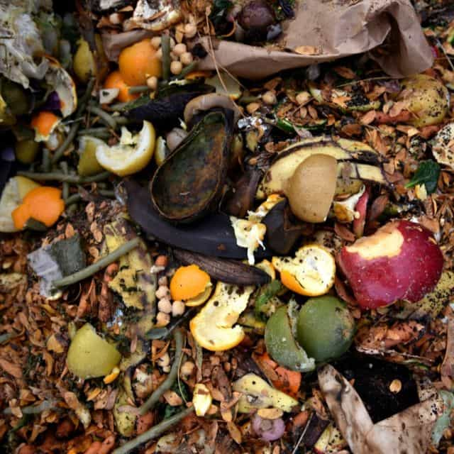 New 'OK Compost' Certified Label Material from Avery Dennison
